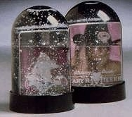 Standard Picture Snow Globe